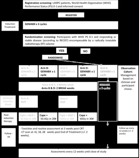 Scalop-2_Stage2_Schema.png