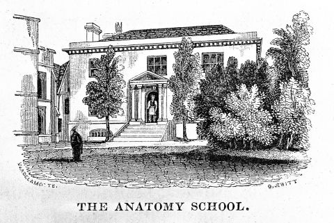 Engraving of the Anatomy School with a student in front in traditional robes