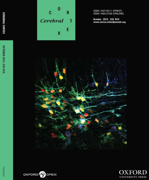 Cerebral Cortex October 2015 V25 N10.jpg