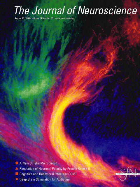 The Journal of Neuroscience.jpg