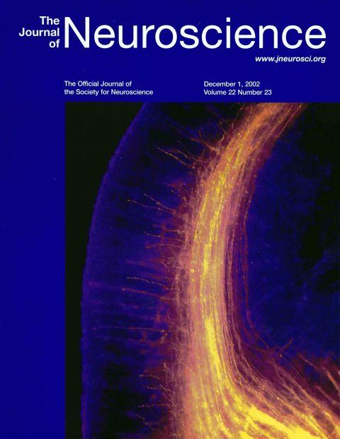 Neuroscience 2002.jpg