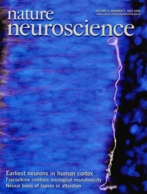 Nature Neuroscience 2006.jpg