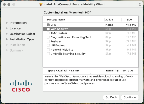 CISCO AnyConnect options