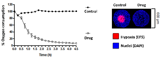 Molecular Resistance 2