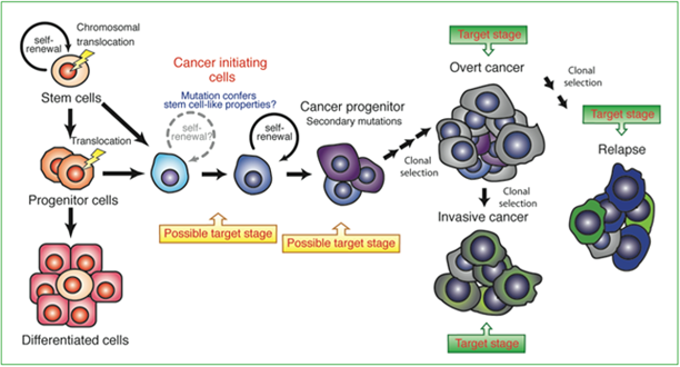 Figure depicting the events occurring in development of overt cancer.