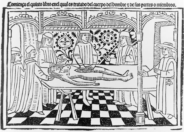 14th century dissection.jpg
