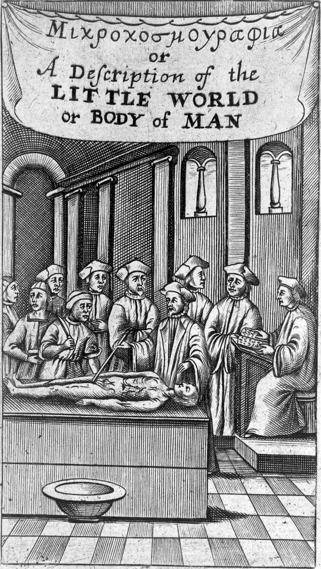 16th century engraving of a dissection titled