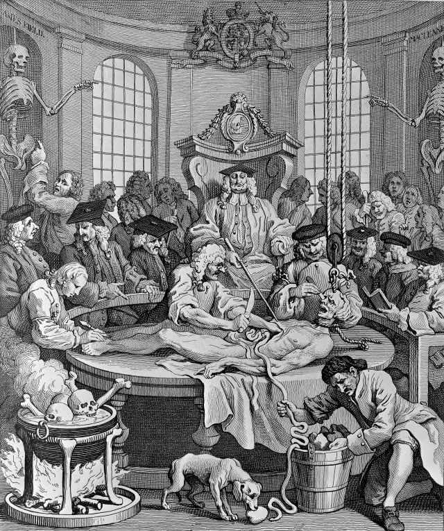 A room of students watch as three physicians dissect an body, with organs fed through to a bucket