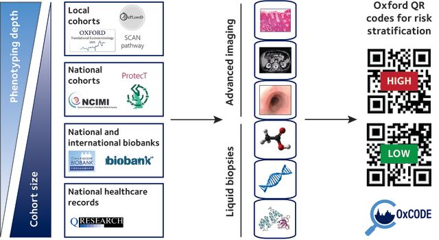 A schematic diagram outlining OxCODE's vision. We will use local cohorts (e.g. OxPLoreD, Translational Gastroenterology Unit, SCAN pathway), National cohorts (e.g. NCIMI, ProtecT, PathLAKE), National and international biobanks (e.g. UK Biobank, China Kadoorie Biobank) and National Healthcare Records (e.g. QResearch). These cohorts span a range of phenotyping depths and cohort sizes. To these cohorts, we will apply advanced imaging (e.g. pathology, computed tomography and endscopy) and liquid biopsy (e.g. metabolites, DNA, proteins) technologies to generate Oxford QR codes for risk stratification, identifying those at higher or lower risk.