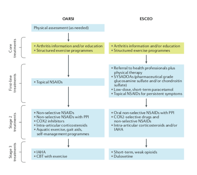 Simplified list of OARSI and ESCEO treatments for the non-surgical treatment of knee OA from the 2019 guidelines. Image - Nature Reviews Rheumatology