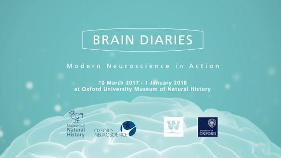 Brain diaries to receive an oxtalent public engagement award