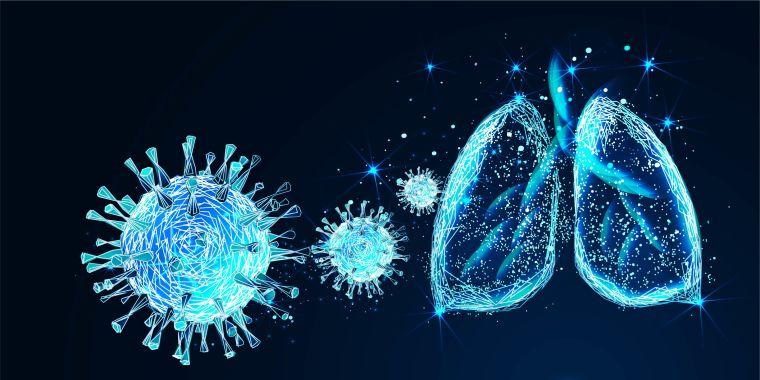 Digital illustration of coronavirus and lungs