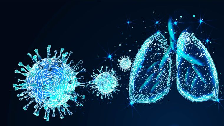Digital illustration of coronavirus and lungs
