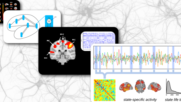 Developing new analysis tools for understanding human brain activity