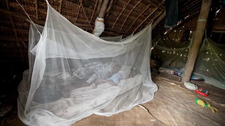 Children sleeping on a mattress on the floor and covered by a mosquito net