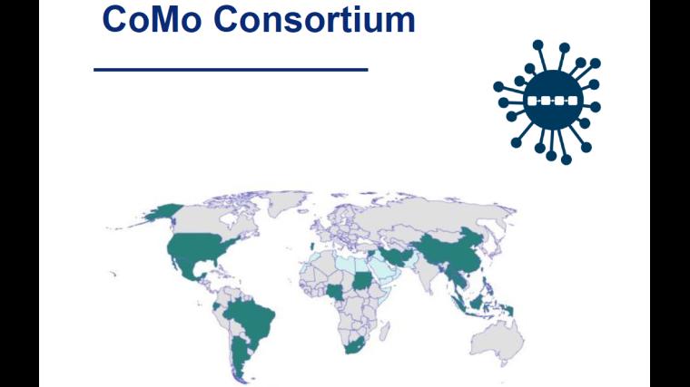 The COVID-19 International Modelling Consortium (CoMo Consortium)