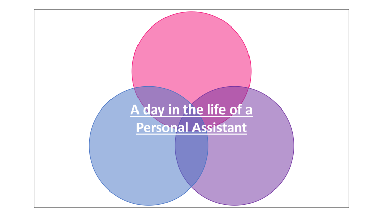 Graphic of 'Day in the life of a PA'