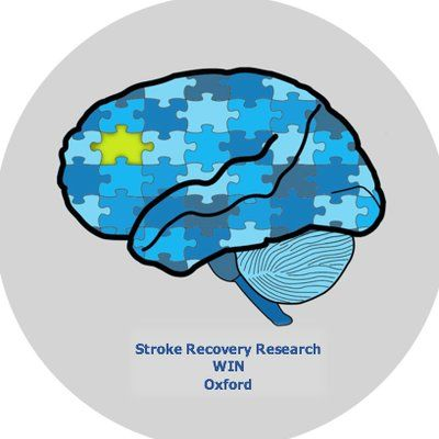 Stroke recovery research