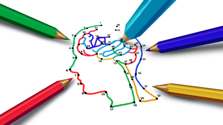 Image shows outline of human head and brain being coloured in with pencils.