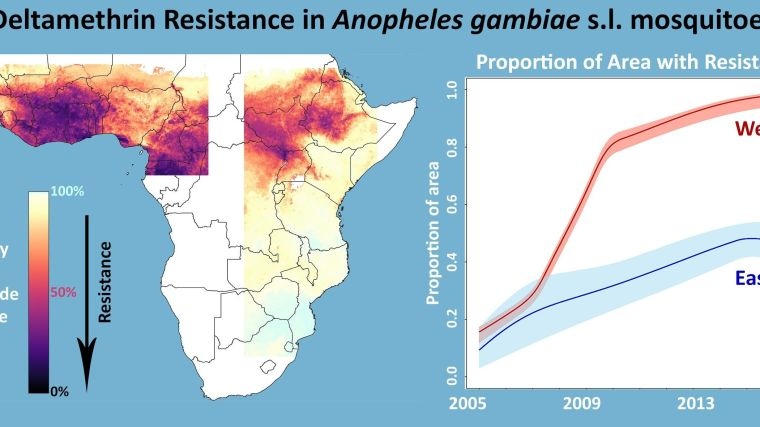 Map showing deltamethrin resistance in anopheles gambiae s.I. mosquitoes