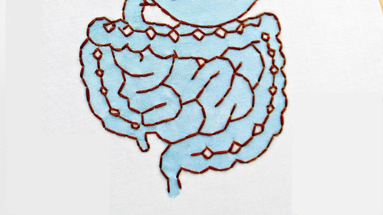 A depiction of the intestines in embroidery.