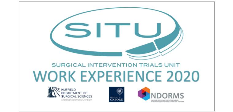 SITU work experience 2020 logo