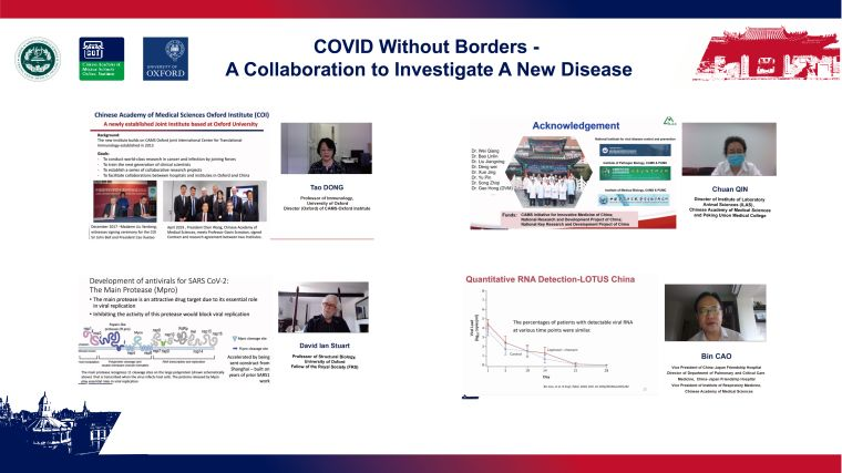 Screenshot of the online seminar COVID Without Borders - A collaboration to Investigate A New Disease