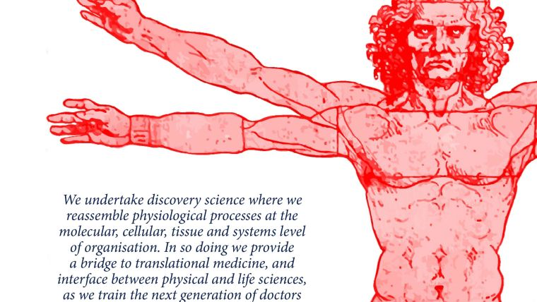 "Annual Report front cover segment - red vitruvian man and slogan ""We undertake discovery science where we