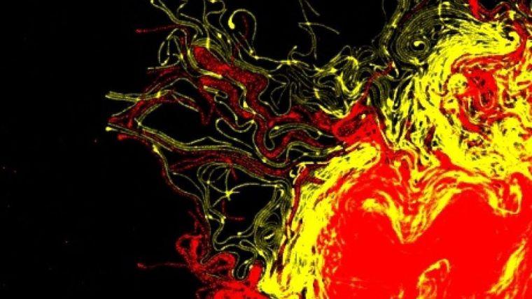 Antibiotic resistant cells competing against antibiotic sensitive cells