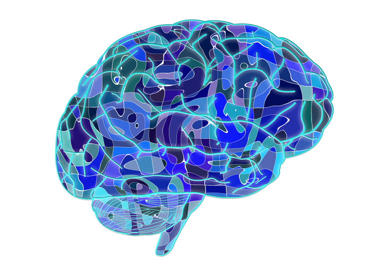 Graphical representation of a brain