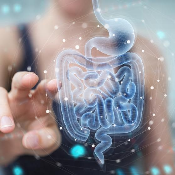 Woman on blurred background using digital x-ray of human intestine holographic scan projection 3D rendering