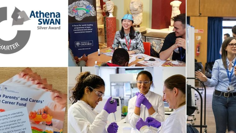 Montage of pictures illustrating our departmental activity (e.g. a poster session, a public engagement event)