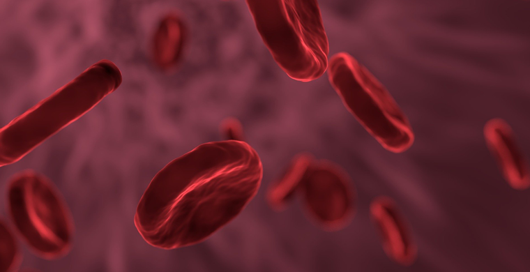 Graphic of red blood cells in blood vessel.
