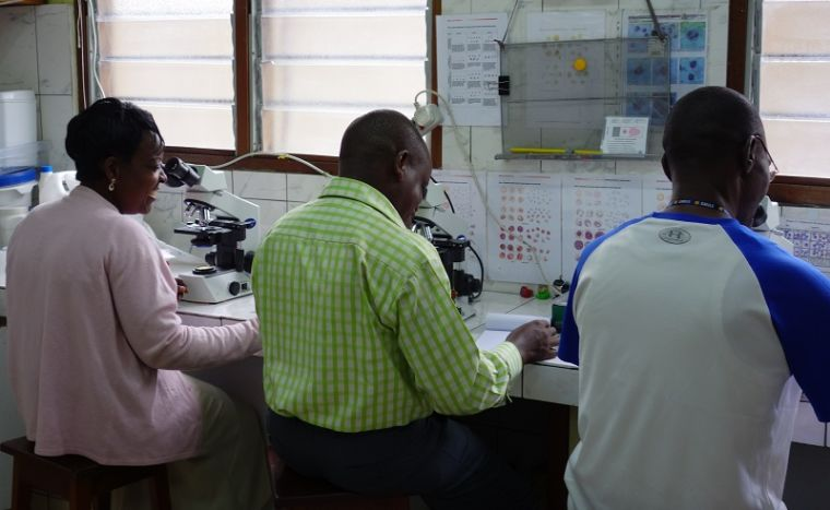 Three researchers using microscopes to study malaria parasites