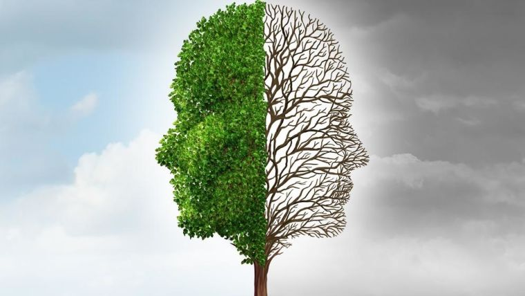 Trees in the shape of two heads, one with green leaves in blue sky and the other with empty branches in grey sky.