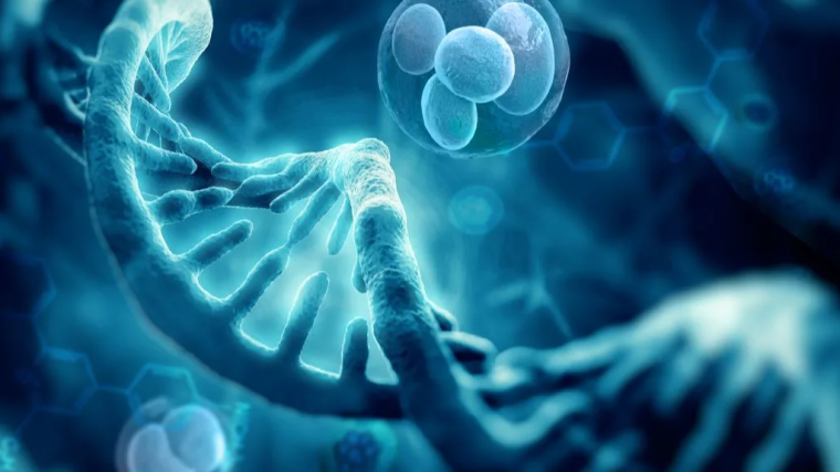 3d render of dna structure and cells
