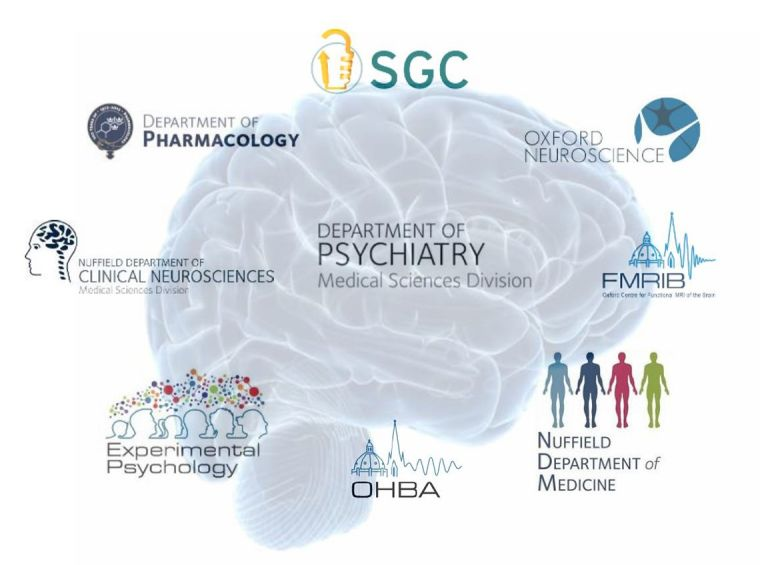 Msc clinical and therapeutic neuroscience logo 1