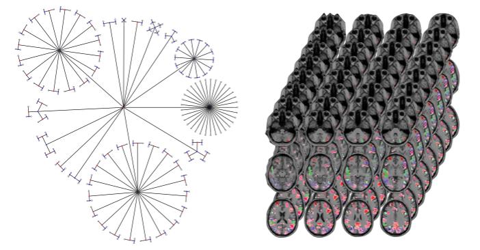 Big Data, Imaging Genetics and Statistics images