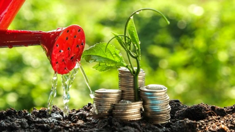Image shows watering can pouring water over a plant with stacks of coins growing on top of the plant.