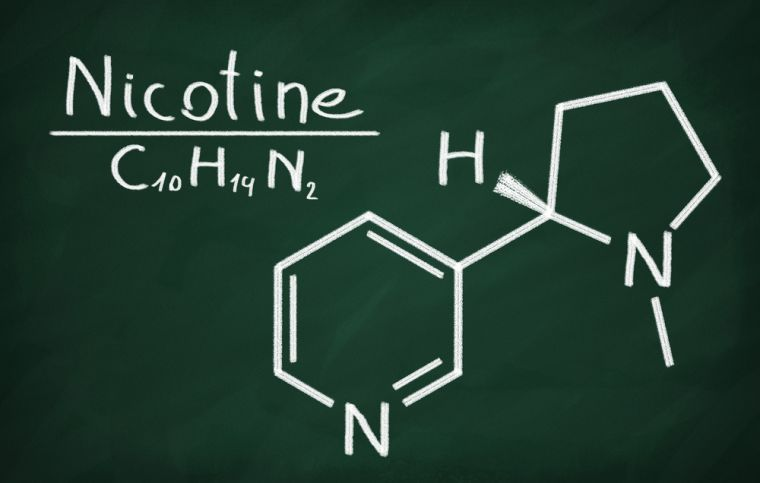 Nicotine molecule - scientific format