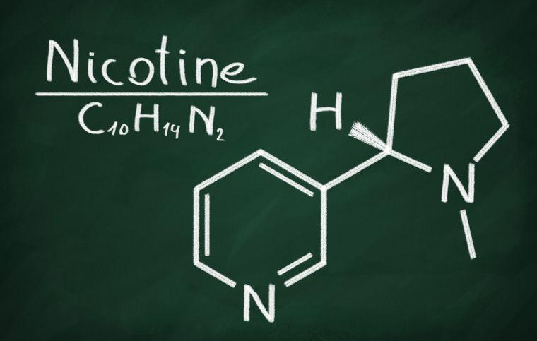 Nicotine molecule - scientific format