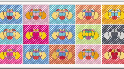 15 fruit fly brains in a colourful grid design