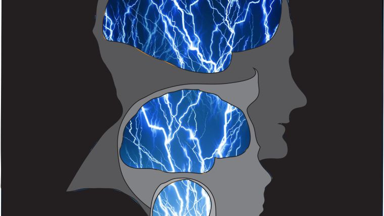 Overlayed silhouttes of adult, adolescent, infant and baby craniums, highlighting neuronal circuits in their brains