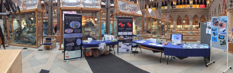 The Hydregen stall in the Natural History Museum