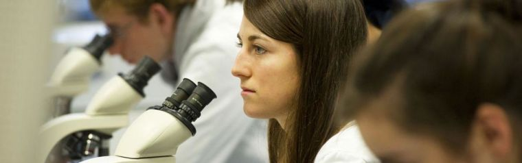 Researcher with microscopes