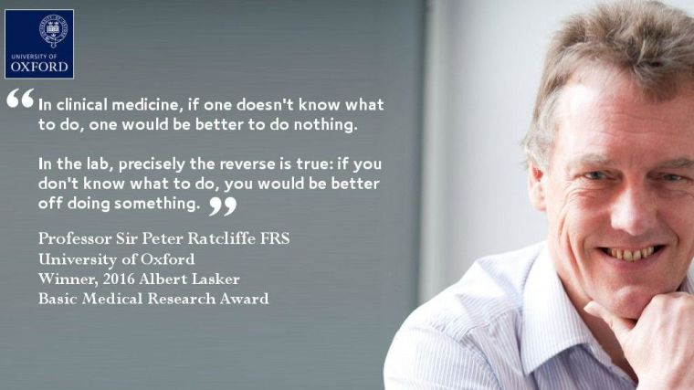 Lasker award for professor sir peter ratcliffe