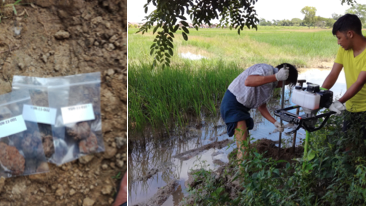 Composite photo of researchers analysing the soil for melioisodis bacteria (B. pseudomallei) in Myanmar