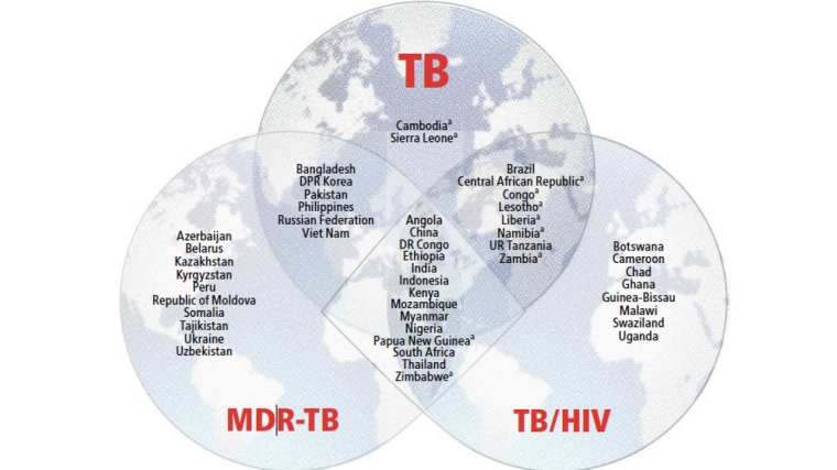 Genetics sheds light on the spread of tb