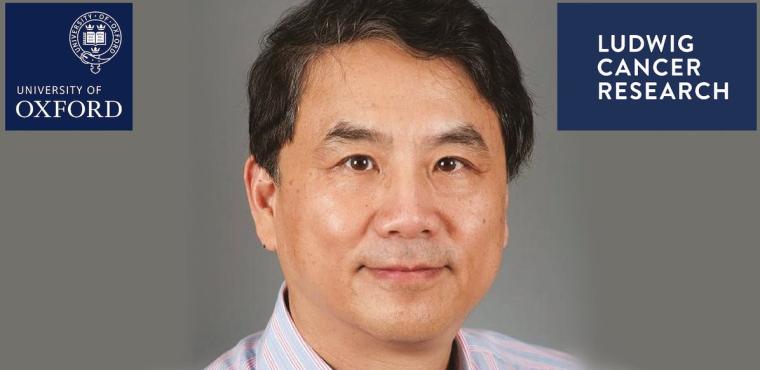 Headshot of Yang Shi