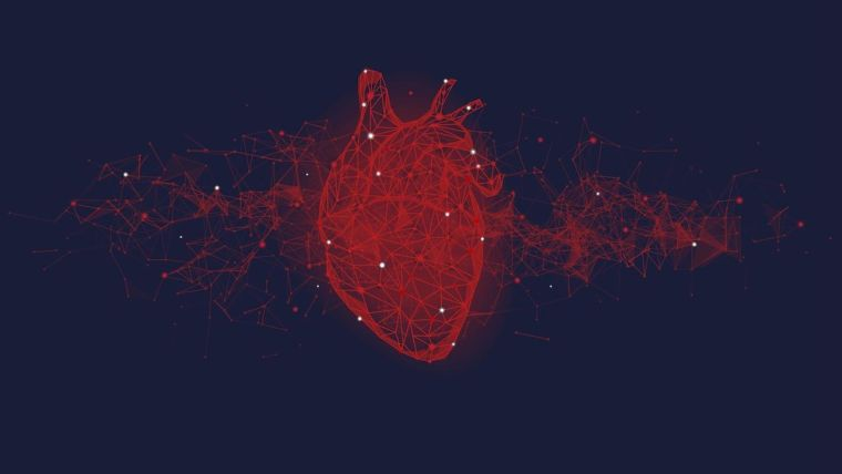 A digital image of a human heart